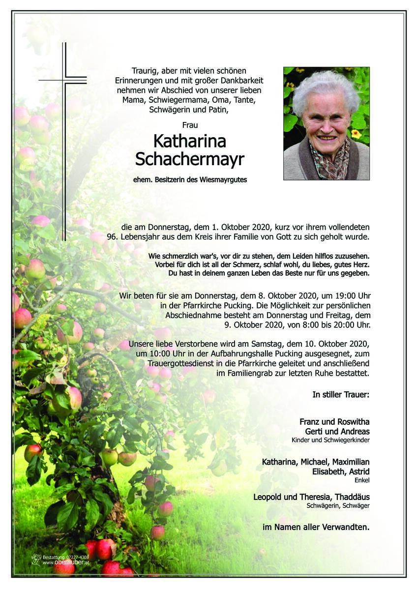 628_schachermayr_katharina.jpeg